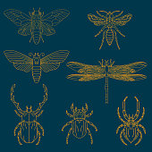 vector illustration of cute insect collection set