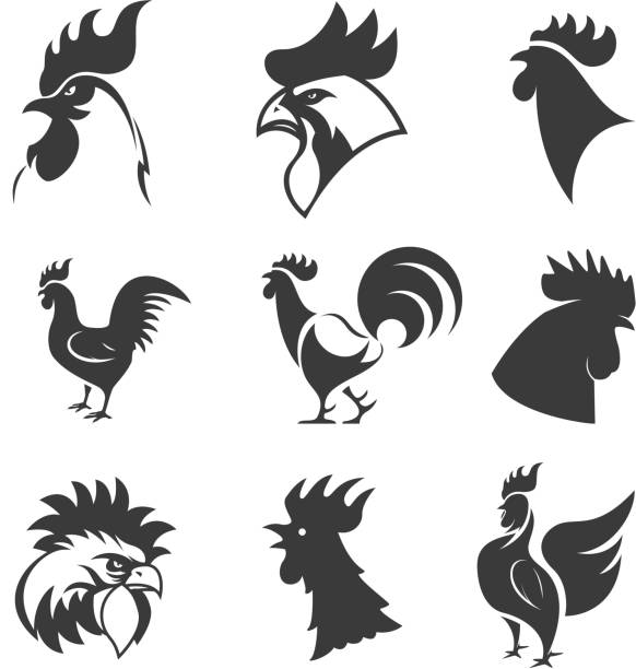 set of the roosters icons. chicken heads. design elements - rooster stock illustrations, clip art, cartoons, & icons