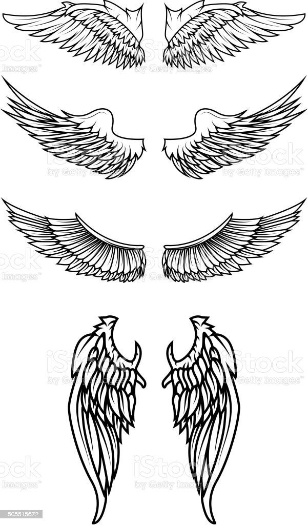 Set of the wings in vector. vector art illustration