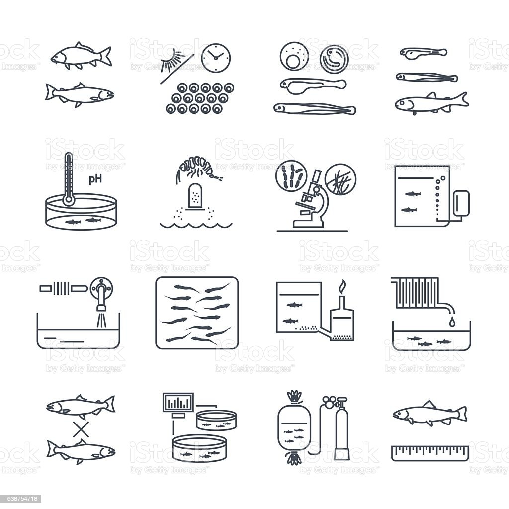 set of thin line icons aquaculture production process royalty-free set of thin line icons aquaculture production process stock illustration - download image now