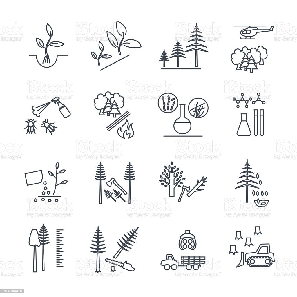 set of thin line icons forestry and silviculture vector art illustration