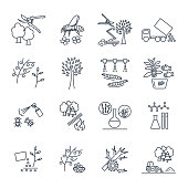set of thin line icons gardening, farm production process