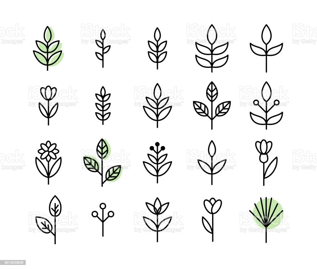 Set of thin line leaf icons vector - Grafika wektorowa royalty-free (Abstrakcja)