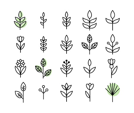Set of thin line leaf icons vector clipart