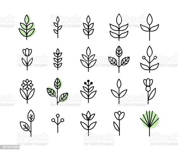 Set of thin line leaf icons vector vector id951820906?b=1&k=6&m=951820906&s=612x612&h=0xkfgo 8iiny6u9xqq mbz7pxhlcgcmokcdauumrqpq=