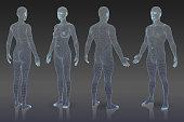 Set of three dimensional bodies.
