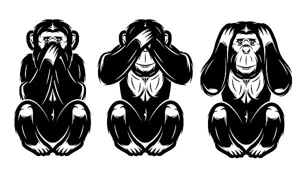 satz von drei affen-nicht sehen, nicht hören, die sagen, - neuweltaffen und hundsaffen stock-grafiken, -clipart, -cartoons und -symbole