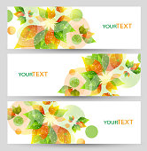 Set of three nature summer vector banners with floral elements. Abstract vector eps10 headers with place for your text