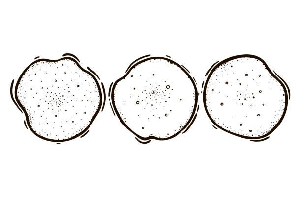 bildbanksillustrationer, clip art samt tecknat material och ikoner med uppsättning av tre pannkakor. culinary bakning. vektorillustration. - crepe
