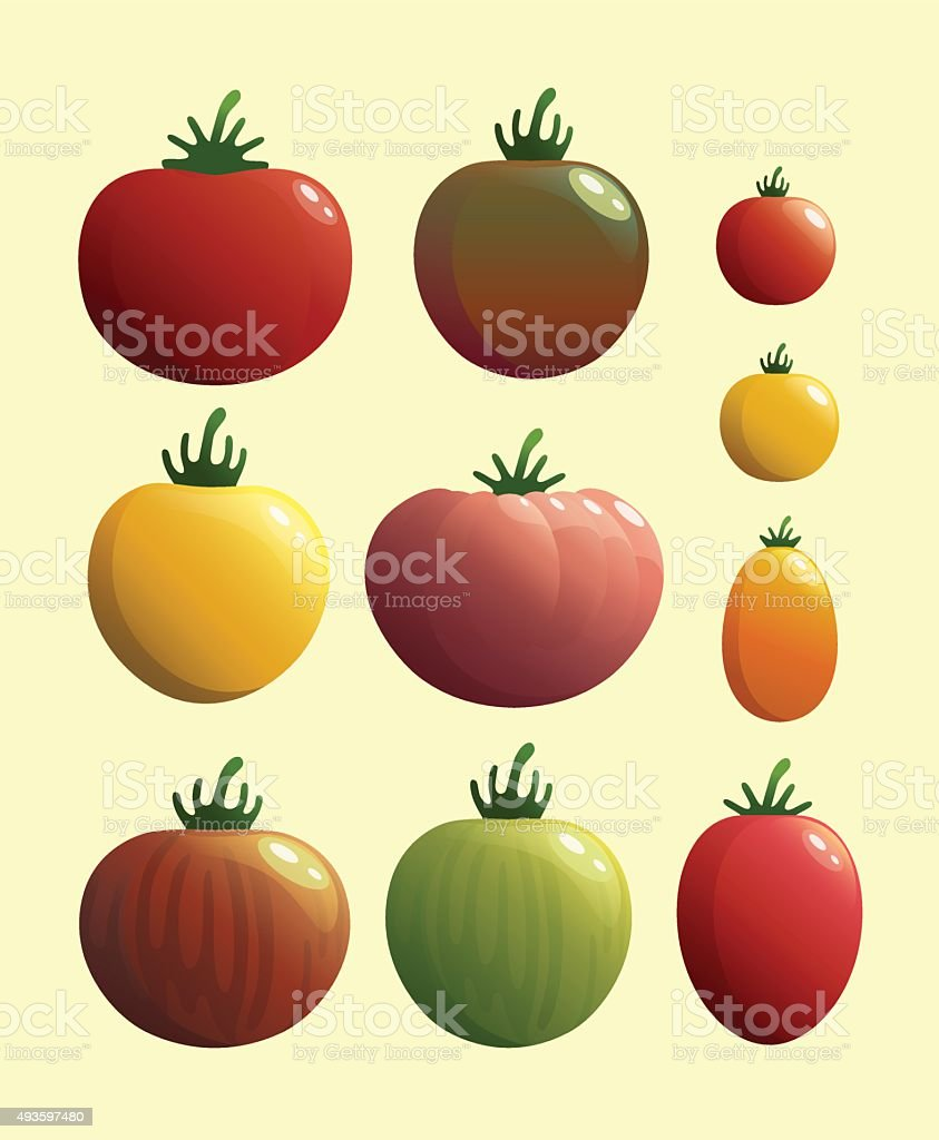 Set of tomato.Vector illustration. vector art illustration