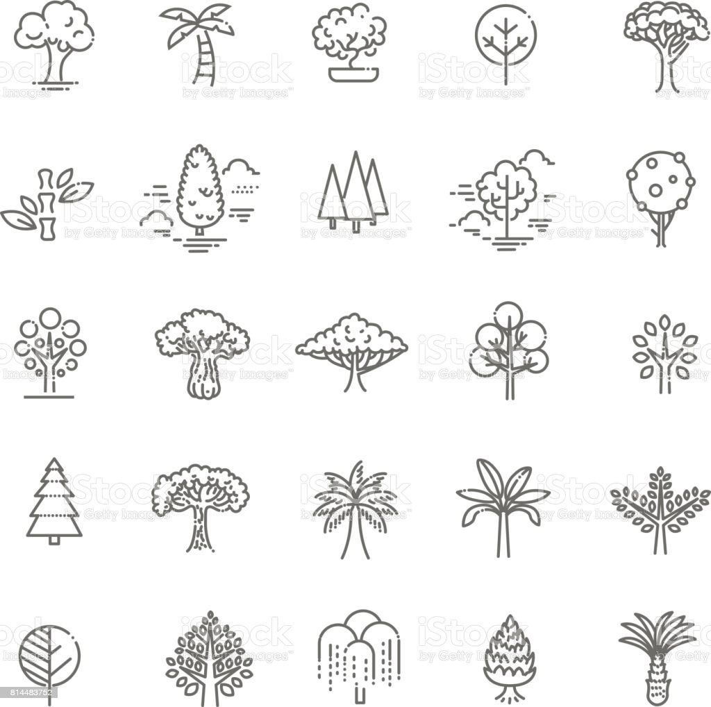 Set of Tree shape Vector Line Icons - illustrazione arte vettoriale