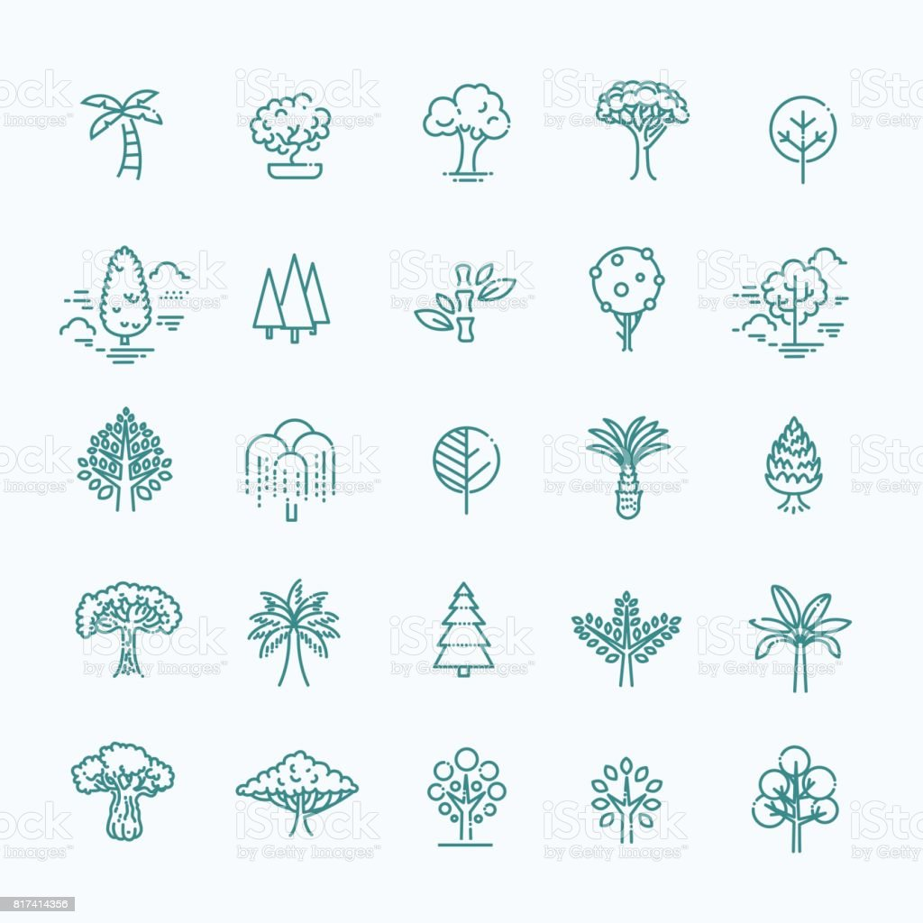 Set of Tree shape Vector Line Icons royalty-free set of tree shape vector line icons stock illustration - download image now