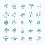 Set of Tree shape Vector Line Icons