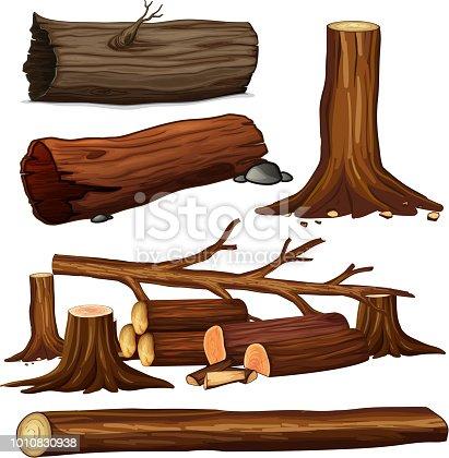 A Set of Tree Wood illustration