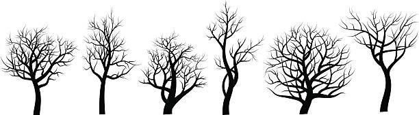 set of trees sihlouette on white background - winterruhe stock-grafiken, -clipart, -cartoons und -symbole