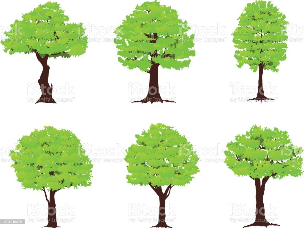 Set of trees vector art illustration