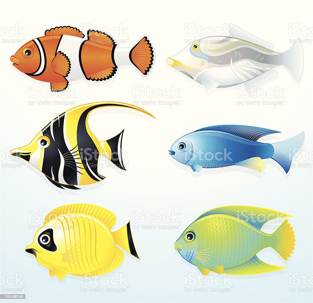 Set Of Tropical Fish Vector Images Royalty Free