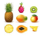 Vector set of whole and half cut tropical fruits pineapple, kiwi, mango, papaya, dragonfruit isolated on white background