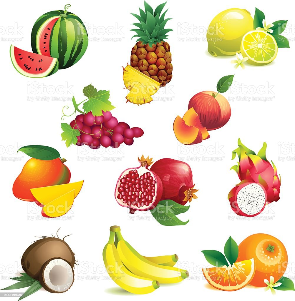 Set of tropical fruits with leaves and flowers vector art illustration