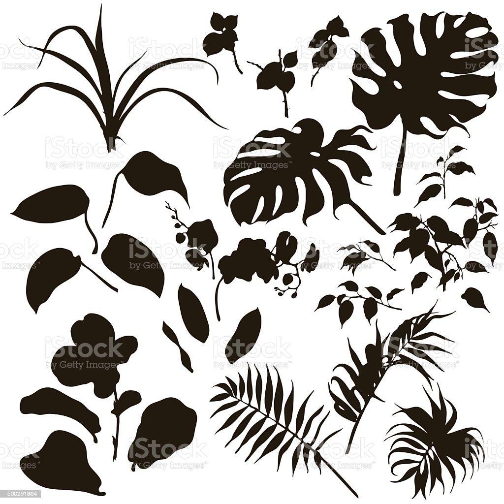 Set of tropical plants silhouette. vector art illustration