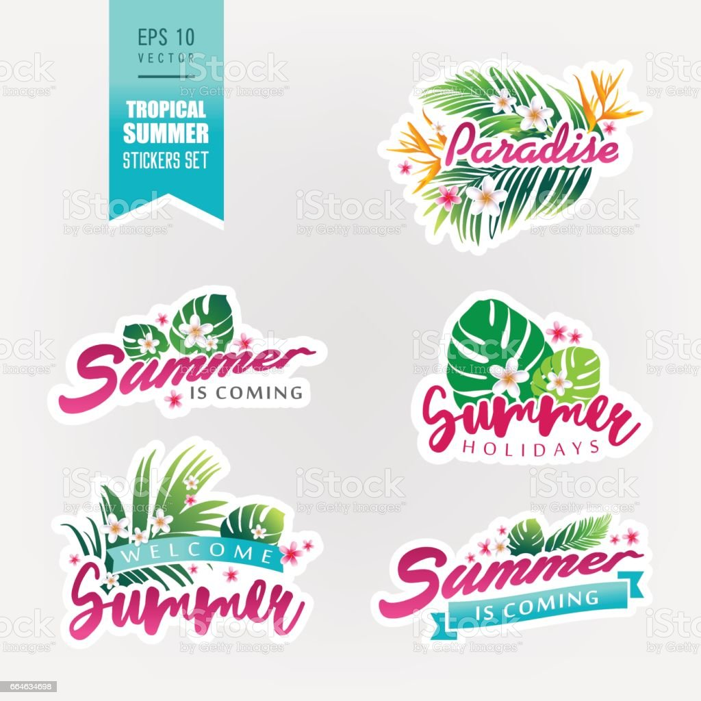Set of tropical summer stickers vector art illustration
