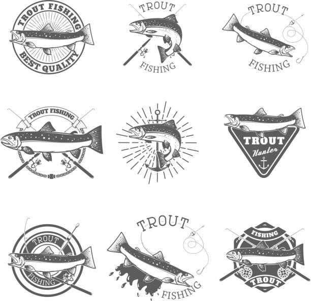 illustrazioni stock, clip art, cartoni animati e icone di tendenza di set of trout fishing labels. - trout