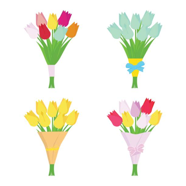 illustrations, cliparts, dessins animés et icônes de ensemble de tulipe fleurs bouquets isolés sur fond blanc. arrangement de la fleur. - bouquet de fleurs