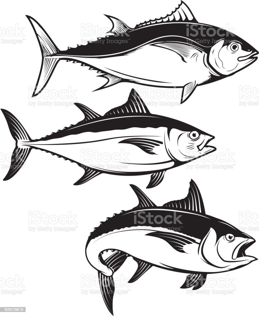 Set Of Tuna Fish Icons Isolated On White Background Stock Vector Art ...