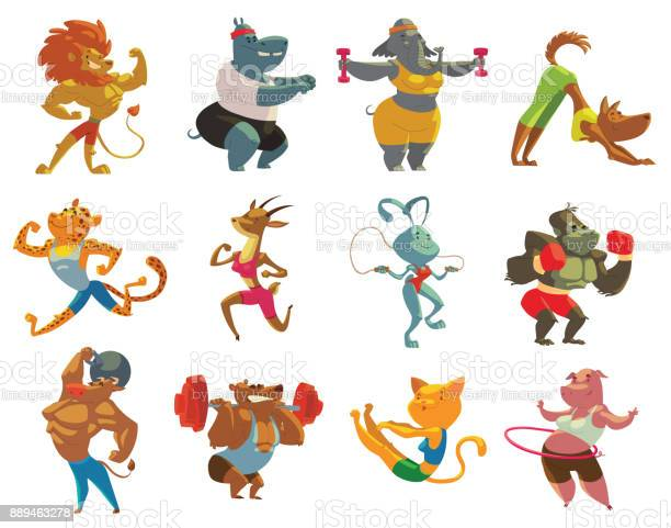 Set of twelve funny animals in the gym vector id889463278?b=1&k=6&m=889463278&s=612x612&h=ehljylrbxxd22ymnf1rqq3w5w08mxgo x63g3ja5ygk=
