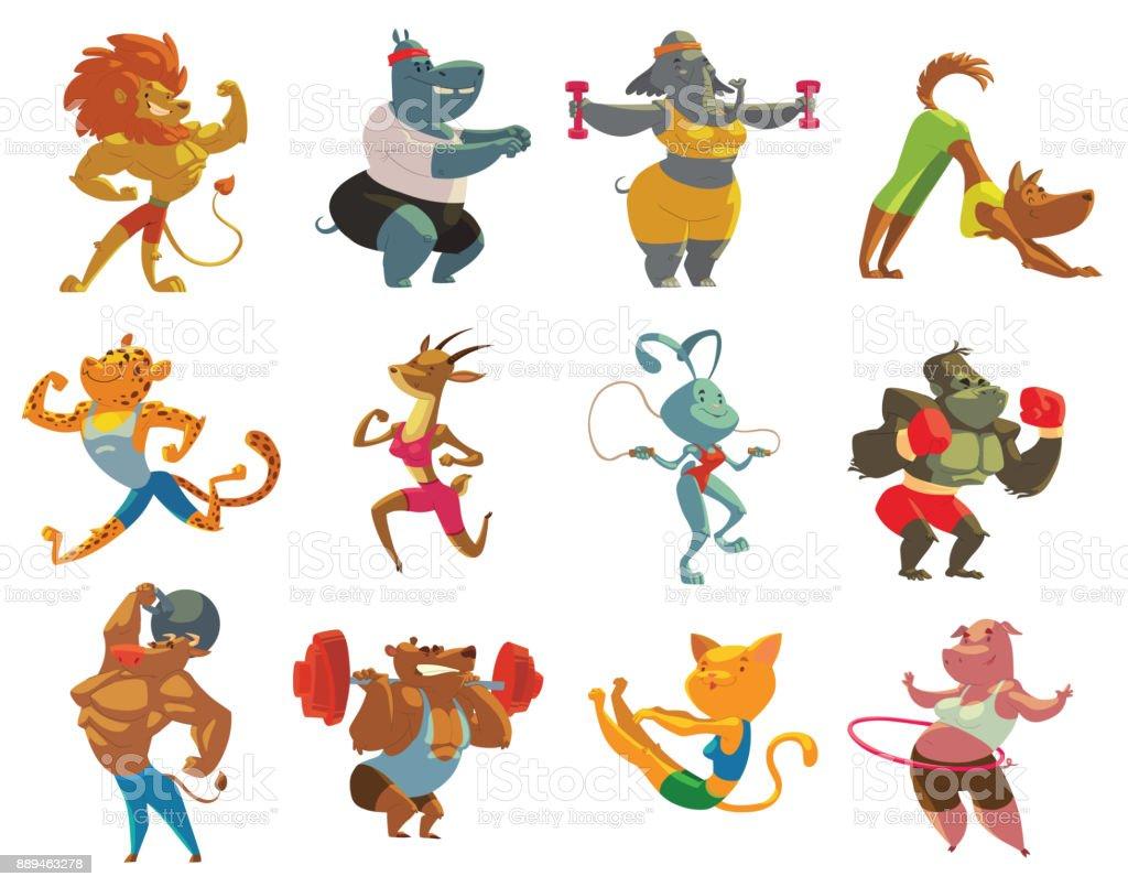 Set of twelve funny animals in the gym vector art illustration
