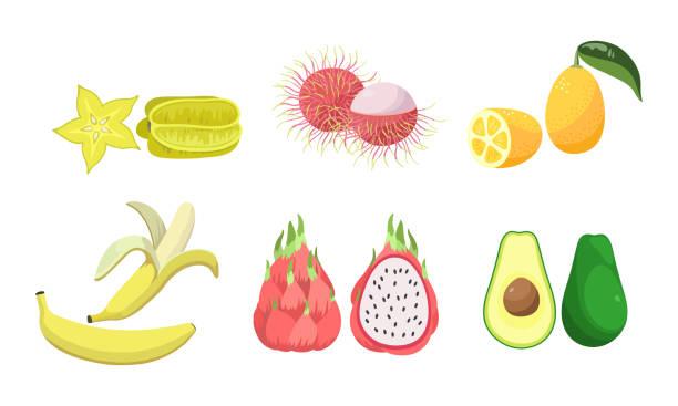 카람볼라, 람부탄, 레몬, 바나나, 피타야, 아보카도 두 조각 세트. 평면 만화 스타일의 벡터 일러스트레이션입니다. - 잘 익은 stock illustrations