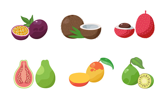Set of two slices passion fruit, coconut, lychee, guava, mango, feijoa. Vector illustration in flat cartoon style.