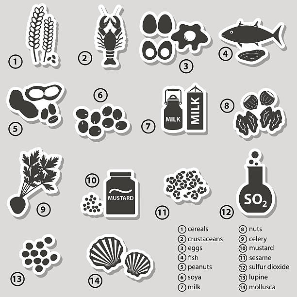 set of typical food allergens for restaurants stickers eps10 vector art illustration