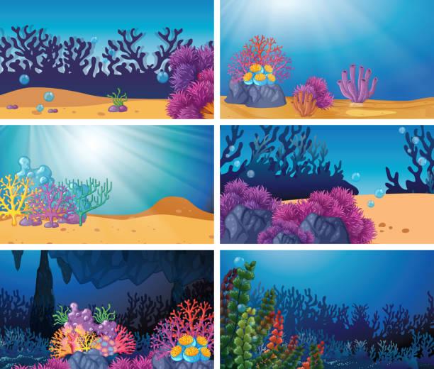 bildbanksillustrationer, clip art samt tecknat material och ikoner med uppsättning undervattens scen - i havet