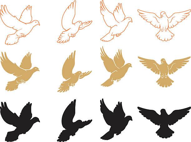Set of Varied Doves Flying vector art illustration