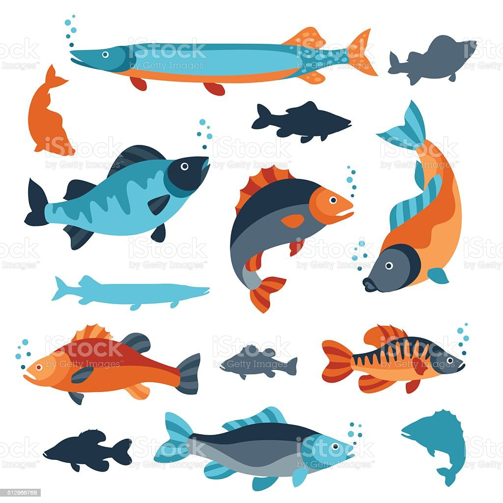 Set of various fish. Objects for decoration, design on advertising vector art illustration