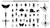 set of various insect in silhouette, with insect name. easy to modify