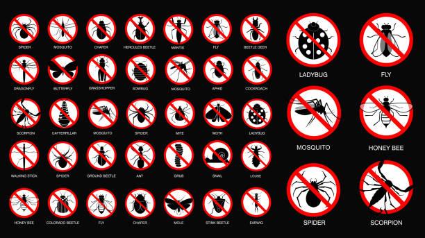 illustrazioni stock, clip art, cartoni animati e icone di tendenza di set of various insect prohibited in silhouette, with insect name. - attrezzatura per la disinfestazione