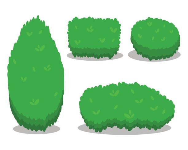 set of various isolated bushes. cool simple flat design with shadows. different shapes of bushes. illustration. - куст stock illustrations
