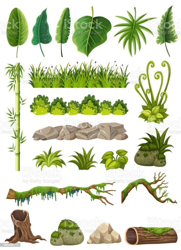 Conjunto de vários objetos de selva - ilustração de arte em vetor