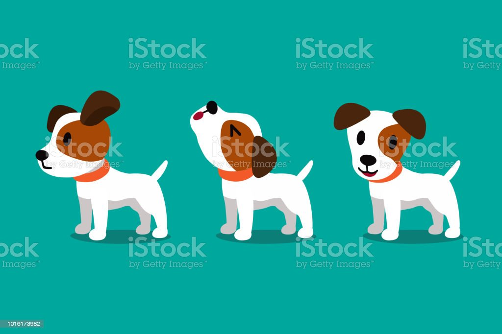 Set of vector cartoon character cute jack russell terrier dog poses