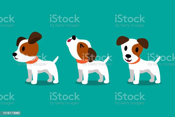 Set of vector cartoon character cute jack russell terrier dog poses vector id1016173982?b=1&k=6&m=1016173982&s=612x612&h=5bhs2hoehc8dzlrm4yuf7g ycggguci6diu owjve9q=
