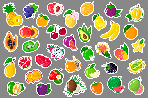 Set of vector cartoon illustrations stickers with summer exotic fruits and berries.