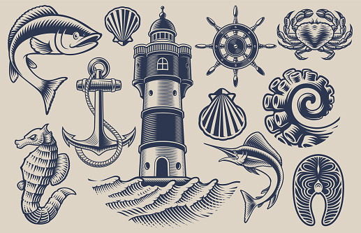 Set of vector design elements for seafood