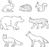 Set of vector forest animals in contours