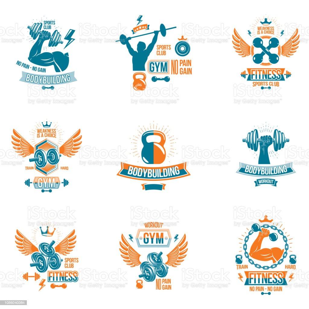 Ilustración De Conjunto De Vector Emblemas De Ajuste Y