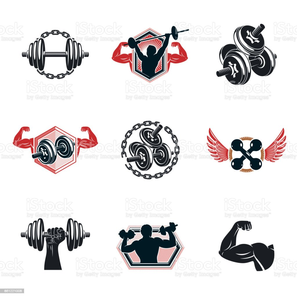 Set of vector gym theme illustrations created with dumbbells, barbells and disc weights sport equipment. Bodybuilder body shape. vector art illustration