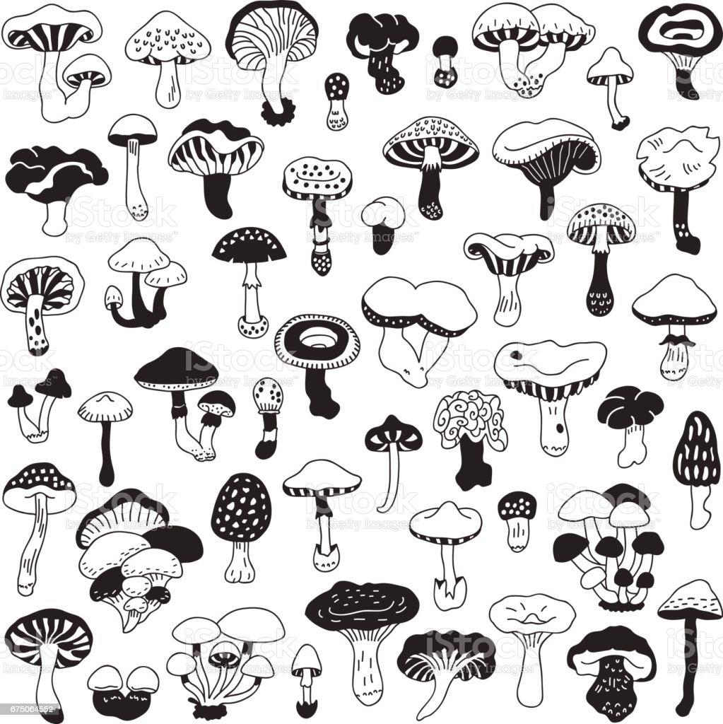 Set of vector hand-drawn, doodles mushrooms. vector art illustration