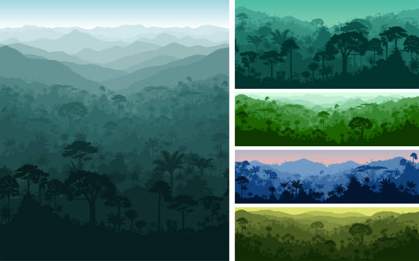 set of vector horizontal seamless tropical rainforest Jungle backgrounds set of vector horizontal seamless tropical rainforest Jungle backgrounds indonesia stock illustrations