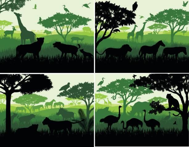 ensemble d'illustrations vectorielles du paysage safari savane africaine avec des silhouettes d'animaux sauvages dans les modèles de conception du coucher du soleil - Illustration vectorielle